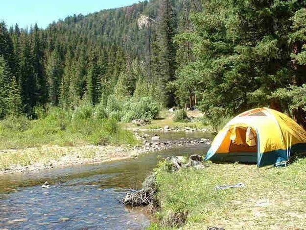 Antimosquitos para camping
